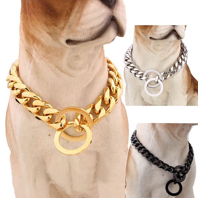 Metallic Dog Collar in Different Color